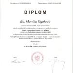 Diplom 2